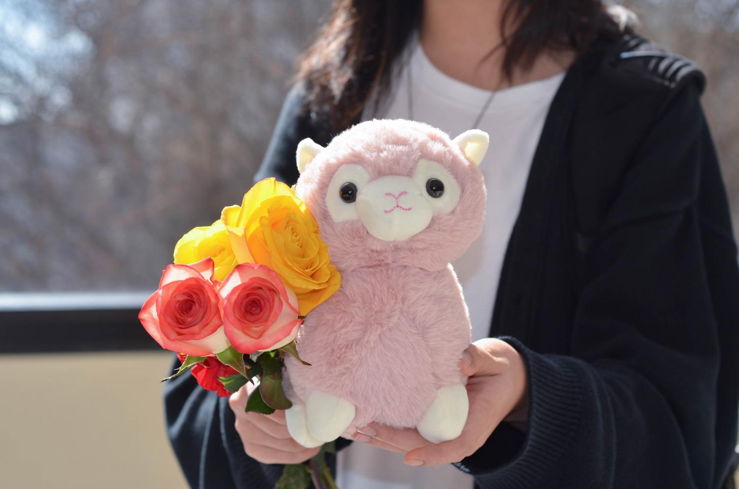 5.+Senior+Sophia+Li+holds+her+Valentine%E2%80%99s+Day+gifts.+Li+received+three+roses+and+a+stuffed+animal%0Afrom+her+friends.