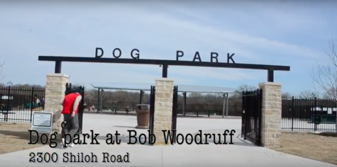 Dog park at Bob Woodruff